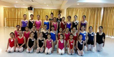 2015 CSTD 4th Malaysia Summer School (8)